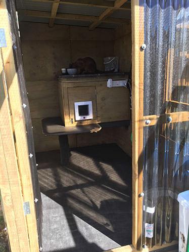 Richie's indoor stud enclosure facilities