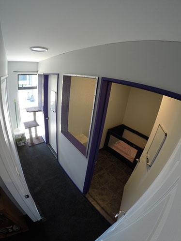 Kitten Rooms facilities